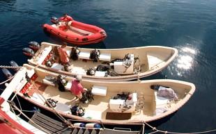 Seven Seas Tenders