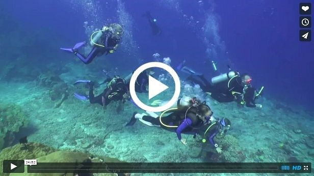 Komodo Family Cruise video