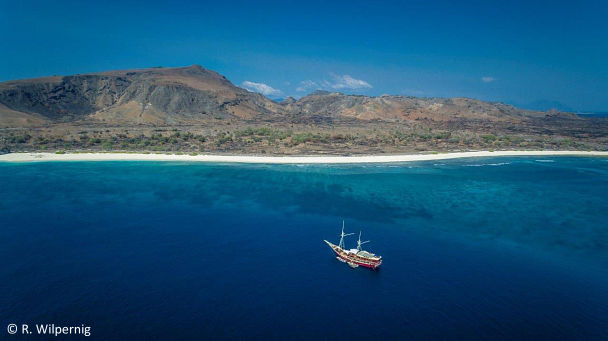Diving East of Flores