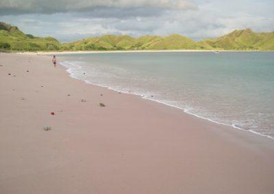 Pink beach...