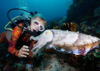Valerie Taylor & cuttlefish