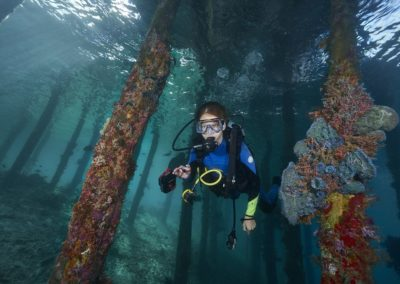 Young diver under pier by Hayley Baillie
