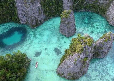 Raja Ampat by Pierre-Yves Cousteau