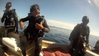 Les Plongeurs Fous in Komodo