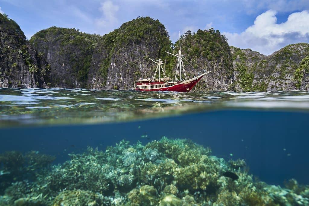 The Seven Seas in Raja Ampat