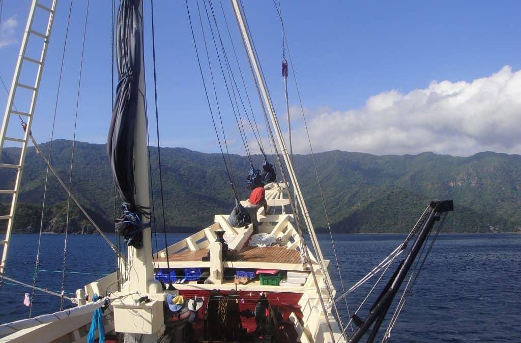 My Seven Seas Story