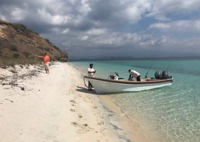 Exploring new beaches