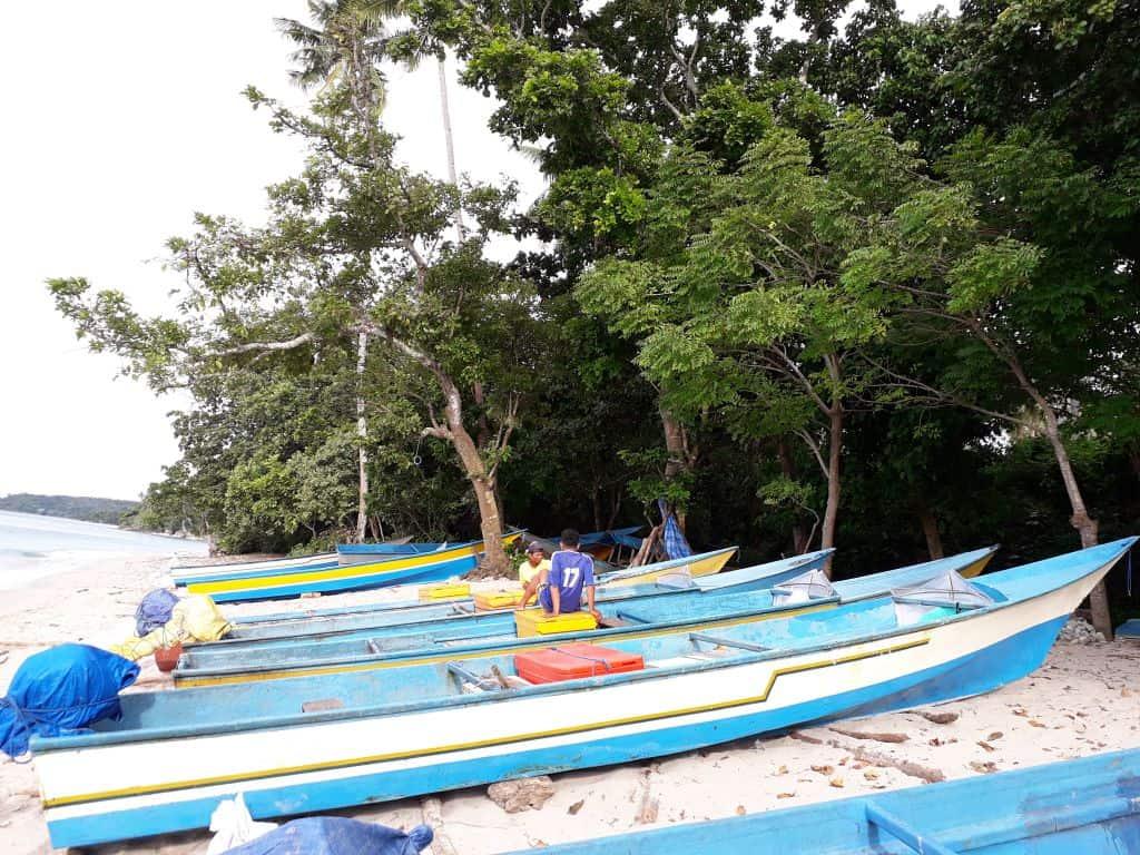 Tuna handline boats