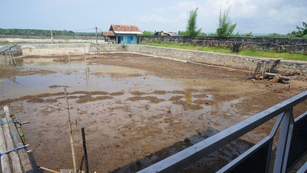 Semi-intensive freshwater aquaculture