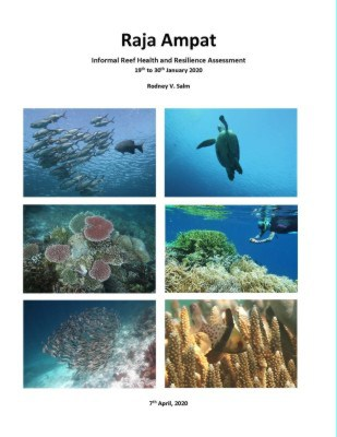 Raja Ampat Field Report