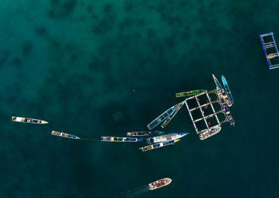Forgotten Islands