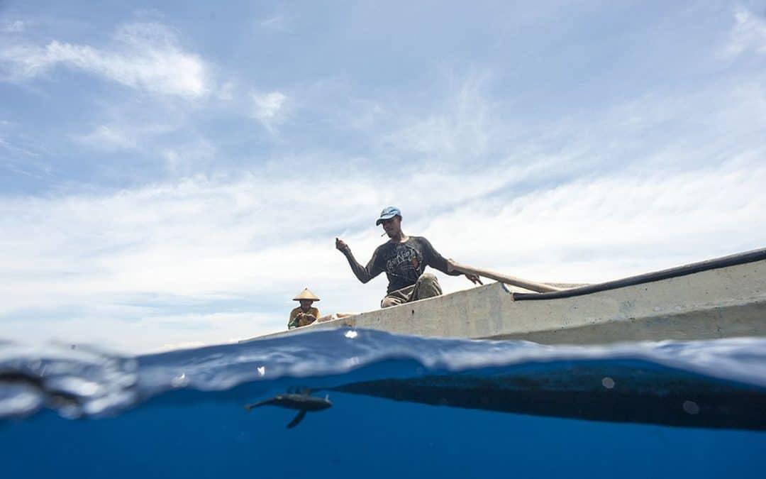 Handline fisher