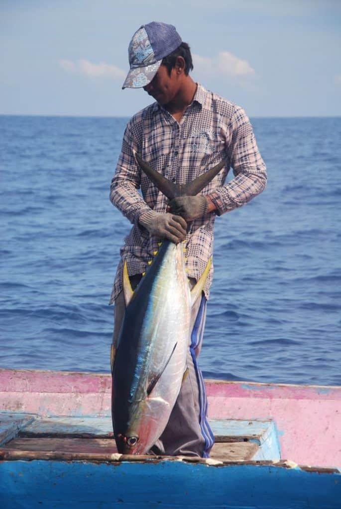 A handline fisher with a nice yellowfin tuna
